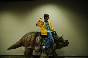 Creation_museum_triceratops_saddle